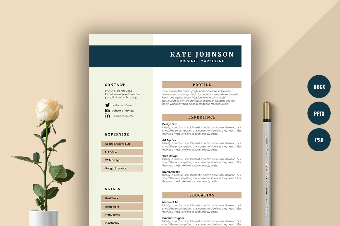Resume Carnival Professional And Modern Resume Templates